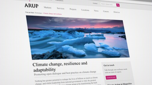 The climate change campaign page created for Arup
